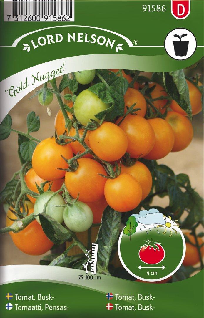 Tomaatti Hedelmä