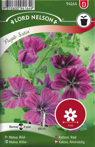 Malva, Kiilto- 'Purple Satin'