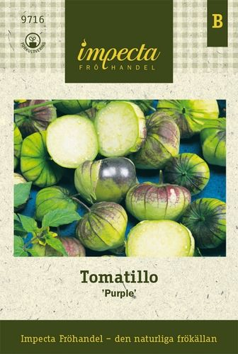 Tomatillo ' Purple'