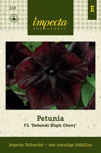 Tarhapetunia 'Debonair Black Cherry' F1