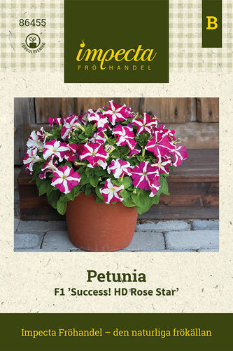 Tarhapetunia F1 'Success! HD Rose Star'