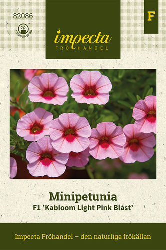 Pikkupetunia 'Kabloom Light Pink Blast' F1